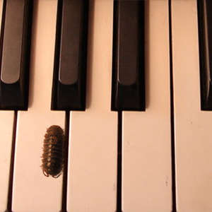 Piano for Roly-Polies